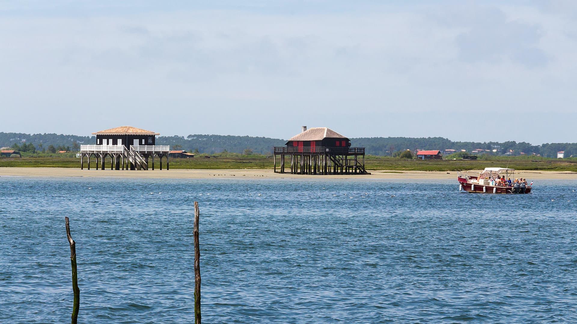 Découverte de l'ile aux oiseaux et ses cabanes tchanquées en bateau